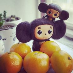 cheburashka who was found in a box of oranges