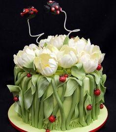 For my Callie : Beautiful lady bug cake...