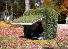 shrub booth?