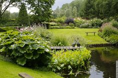 Sweeping lawns, pond and planting make for a large, tranquil garden & landscape › Volker Michael.