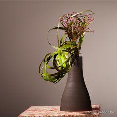 Learn to make this arrangement at http://online.ikebana.be.   #sogetsu #ikebana #typha #floraldesign