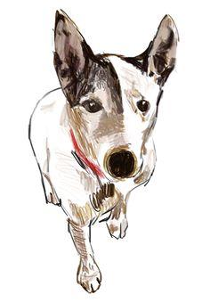 Jackie Mancuso's illustrations.