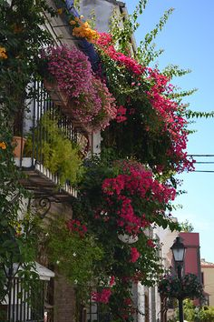 Street in Marbella Old Town, Spain Marbella Old Town, Marbella Spain, Beautiful Flowers, Beautiful Places, Amazing Places, Nerja, Puerto Banus, Longwood Gardens, The Mountains Are Calling