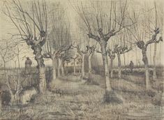 Pollard Birches, 1884, Vincent van Gogh, Van Gogh Museum, Amsterdam (Vincent van Gogh Foundation).