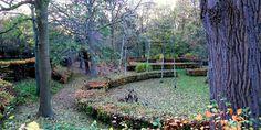 HAVEHJERNEN: Efterår på Mariebjerg Kirkegård