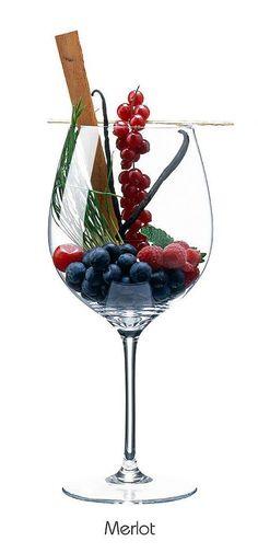 MERLOT: Rote Johannisbeere, Kirsche, Heidelbeere, Himbeere, Zeder, Minze, Gras, Vanille