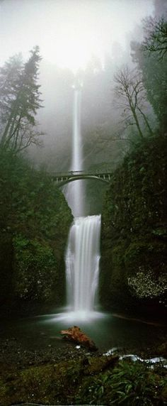 Multnomah Falls ~ Oregon