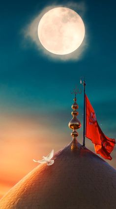 Best Islamic Images, Islamic Pictures, Islamic Posters, Islamic Art, Islamic Quotes, Beautiful Photos Of Nature, Amazing Nature, Karbala Pictures, Karbala Photos