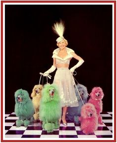 Doris Day, 1952, with technicolor Poodles!