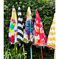 Basil bangs umbrellas