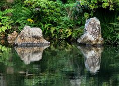 The delightful garden at Kannon-in Temple in Tottori Tottori, Mirror Effect, Japanese Gardens, Creative Photography, Pond, Reflection, Painting, Art, Art Background
