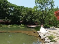 Wedding picture from the Prince bay park 婚纱照在太子湾公园