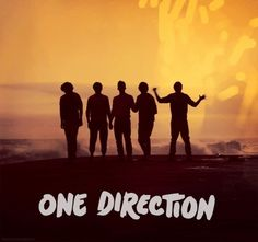 You know your a Directioner when... You know whos who.