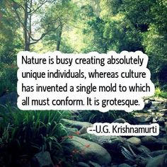 """""""Nature is busy creating absolutely unique individuals, whereas culture has invented a single mold to which all must conform. It is grotesque."""" ~U.G. Krishnamurti"""
