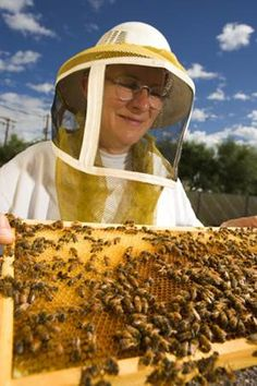 A beekeeper is a person who keeps honey bees for the purposes of securing commodities such as honey, beeswax, pollen, royal jelly; pollinating fruits and vegetables; raising queens and bees for sale to other farmers; Bees For Sale, Shes A Keeper, Bee Supplies, Royal Jelly, Bee Keeping, Queen Bees, Honey Bees, Funny Pictures, Farmers