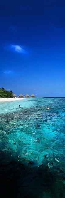 Beautiful Beach, Maldives