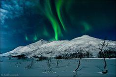 """Aurora Borealis over Norway"""