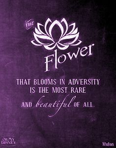 The flower that blooms in adversity is the most rare and beautiful of all. #Purple #quotes