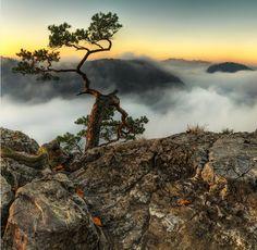 Sokolica & Tatra Mountains