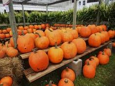 canadian thanksgiving Canadian Thanksgiving, Holiday Recipes, Apple, Vegetables, Holiday Decor, Pumpkins, Celebrations, Fall, Autumn