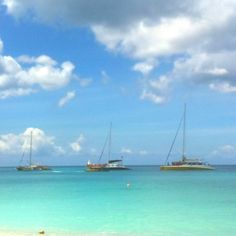 What you should do on holiday in Barbados: a day on a catamaran & snorkeling with the turtles. Never gets old even for an islander like me... :)