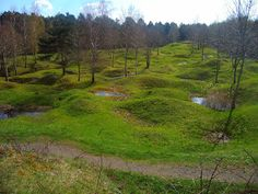 Verdun, France - even after nearly a century, the holes from artillery fire remain.  The Battle of Verdun was the longest battle of the First World War, lasting from February to December of 1916.