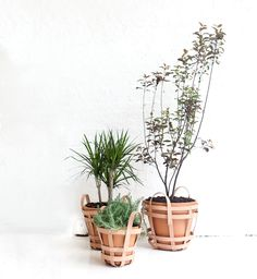 Strap Planters by NYC based studio byAMT