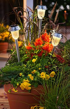 Show off your favorite flowers day or night with solar-powered torches that stand above the greenery.