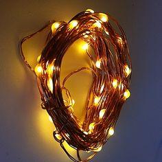 Fairy Lights | The Fairy Light Company | Seed Battery Lights