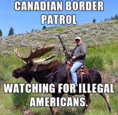 Canadian border patrol watching for illegal Americans. - Real Funny has the best funny pictures and videos in the Universe! Canadian Memes, Canadian Things, Canadian Humour, Canadian History, Memes Humor, Humor Videos, Alan Taylor, Die Simpsons, Meanwhile In Canada