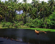 """""""Samoa Tranquility"""" by Lee Gunderson"""