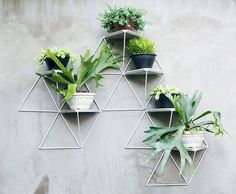 Architects and twin sisters, designed a modular geometric wall planter system to hold potted plants. Made of steel tubes strung together with polypropylene string, the components come with concrete shelves to rest your plants on. Geometric Shelves, Geometric Wall, Plant Wall, Plant Decor, Plant Design, Garden Design, Balcony Design, Garden Art, Garden Tools