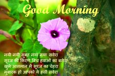Hindi Shayari Good Morning Images Pics for Best Friends Free Good Morning Images, Latest Good Morning, Hindi Good Morning Quotes, Good Morning Images Hd, Good Morning Inspirational Quotes, Good Morning Picture, Morning Pictures, Breakup Picture, Good Evening Wishes