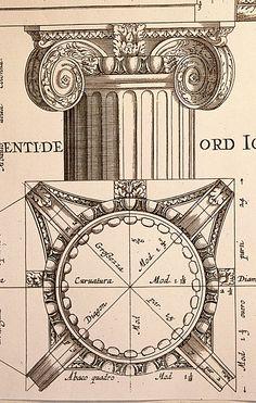 Figure 5: Ionic of Scamozzi, L'Idea Della Architettura Universale, Book VI (detail).