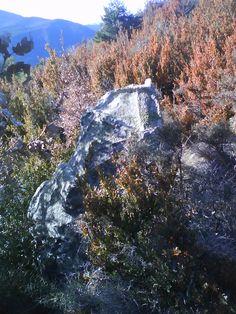 Menhir de Salendar, Barbenuta.