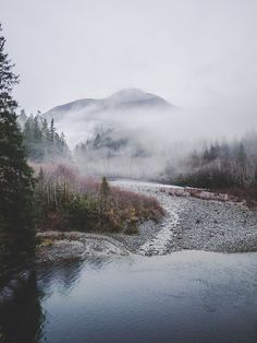 mountains + fog//