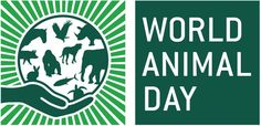 Today is World Animal Day - a day dedicated to raising awareness about animal rights and saving all 7.8 million species on the planet! Sad Dog Stories, Find Your Spirit Animal, Body Shop At Home, World Days, Power Animal, Pet Day, Animal Totems, Animals Of The World, Dog Training Tips