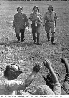 at Rabaul.慰問袋に入っていた熊のぬいぐるみ に喜ぶ兵士たち。おそらく部隊のマスコットになったのではないか。/少しでも和んで頂けたら嬉しいですネ…(´ω ` )