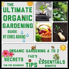 the-ultimate-organic-gardening-guide-gardening-basics-from-a-to-z-for-beginners-with-organic-gardening-tips-for-a-health_18192726.jpeg 300×300 pixels