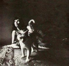 Kate Bush and cat. Nice image with the kittycat (with a periscope tail)! Crazy Cat Lady, Crazy Cats, I Love Cats, Cool Cats, Celebrities With Cats, Celebs, She Wolf, Mystique, Cat People
