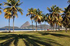 Parque do Flamengo - Rio de Janeiro - Brasil - Foto: Alexandre Macieira | Riotur  | Rio Guia Oficial | www.rioguiaoficial.com.br
