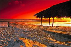 Windsea beach La Jolla