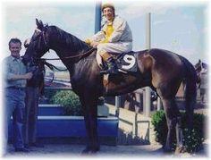Jockey Eddie Acaro    5 time Kentucky Derby winner and 2 time Triple Crown winner.    Google Image Result for http://www.spiletta.com/UTHOF/kelso2.jpg