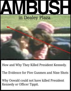 Ambush in Dealey Plaza: How and Why They Killed President Kennedy by Robert Murdoch