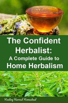20 Medicinal Herbs to Grow in Your Healing Garden (Make Your Own Herbal Remedies with Plants You Grow!) — Home Healing Harvest Homestead Natural Health Remedies, Natural Cures, Natural Healing, Herbal Remedies, Natural Treatments, Cold Remedies, Natural Foods, Natural Oil, Natural Beauty