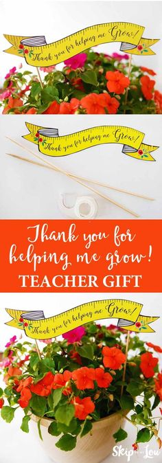 """Teacher appreciation gift idea! Free printable """"thank you for helping me grow"""" banner to pair with flowers."""