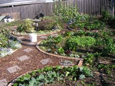Permaculture Garden Design and More that You Need to Know 2015 - 2016