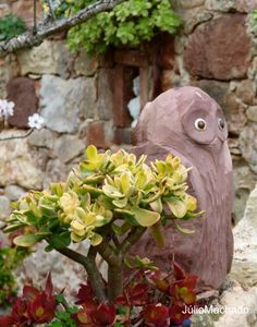 Jardim da Casa Catita no Algarve. Portugal