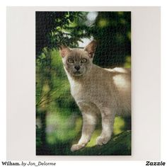 Jigsaw Puzzle created by Jon_Delorme. Cat Gifts, Cat Lover Gifts, Cat Lovers, Kids Jigsaw, Jigsaw Puzzles, Make Your Own Puzzle, Good Birthday Presents, Pet Photographer, My Best Friend