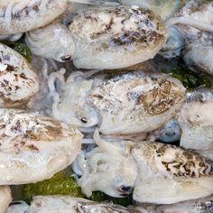 Jak i jak długo gotować owoce morza   IleGotowac.pl Seafood, Stuffed Mushrooms, Vegetables, Sea Food, Vegetable Recipes, Stuff Mushrooms